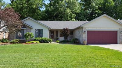 Livonia Single Family Home For Sale: 37781 Pickford Dr