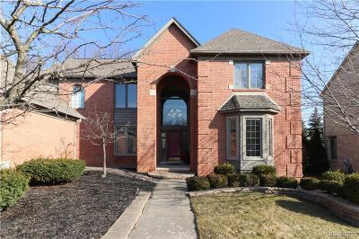Novi Single Family Home For Sale: 47350 Baker St