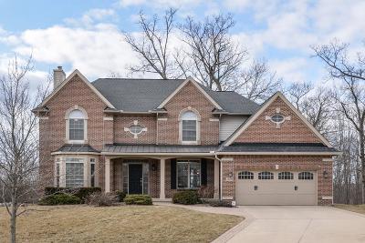 Ann Arbor Single Family Home For Sale: 1228 Innsbrook Ct