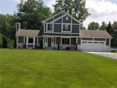 Wixom Single Family Home For Sale: 4083 W Maple Rd
