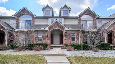 Ann Arbor Condo/Townhouse For Sale: 2968 Signature Blvd