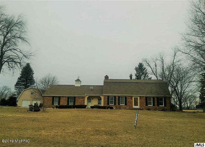 Hillsdale County Single Family Home For Sale: 194 Washington St