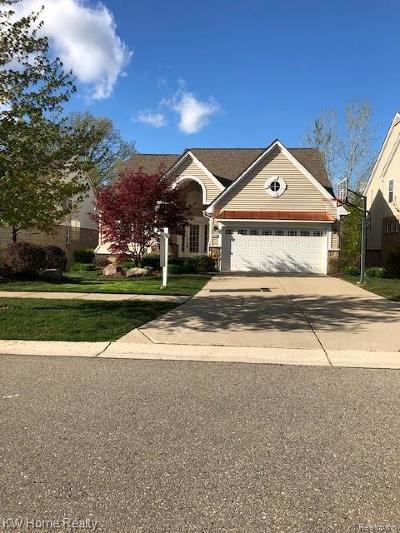 Northville Single Family Home For Sale: 49634 S Glacier