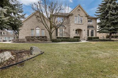 Northville Single Family Home For Sale: 40435 Delta Dr