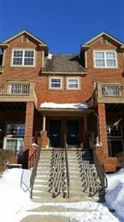 Ann Arbor Condo/Townhouse For Sale: 2881 Barclay Way