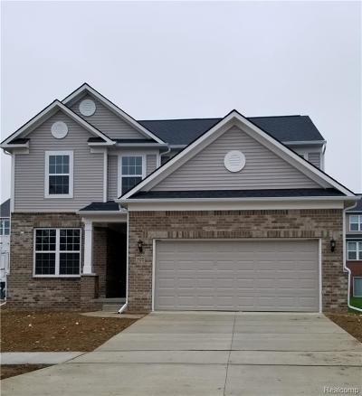 Ann Arbor Single Family Home For Sale: 727 Groveland Cir