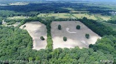 Webster MI Residential Lots & Land For Sale: $175,000