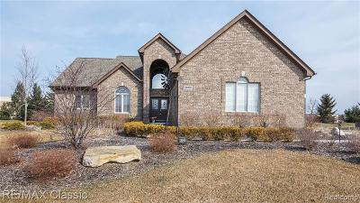 South Lyon Single Family Home For Sale: 52002 Copperwood Dr North