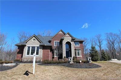 Novi Single Family Home For Sale: 50596 Glades Crt E