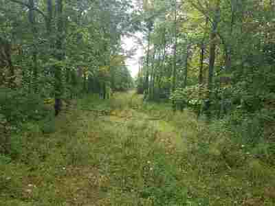 Onsted MI Residential Lots & Land For Sale: $68,000