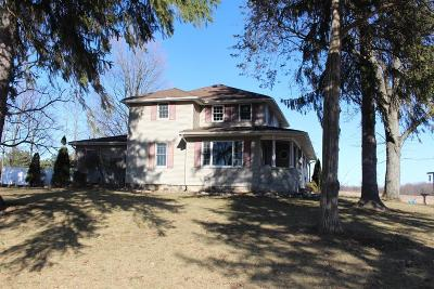Grass Lake Single Family Home For Sale: 2521 Burtch Rd