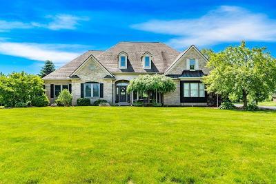 Milan Single Family Home For Sale: 9273 Mirage Lake Dr