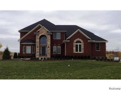 South Lyon Single Family Home For Sale: 24707 Ravine Dr