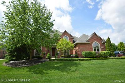 Northville Single Family Home For Sale: 17442 Williamsburg Crt