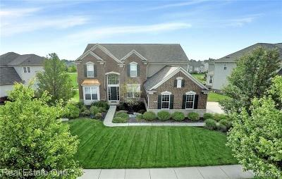 South Lyon Single Family Home For Sale: 59049 Peters Barn Dr