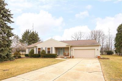 Northville Single Family Home For Sale: 41900 Baintree Cir