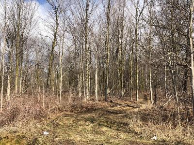 Ann Arbor MI Residential Lots & Land For Sale: $3,300,000