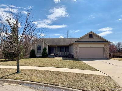 Lansing Single Family Home For Sale: 3401 Ramsgate Dr