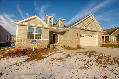 Brighton Single Family Home For Sale: Old Us-23 Parcel 4