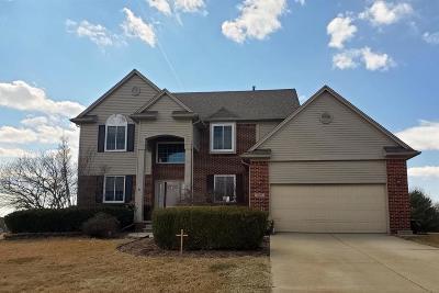 Washtenaw County Single Family Home For Sale: 9007 Paddock Ln