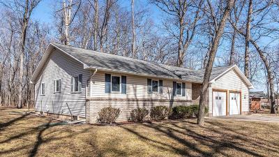 Chelsea Single Family Home For Sale: 9200 Stofer Rd
