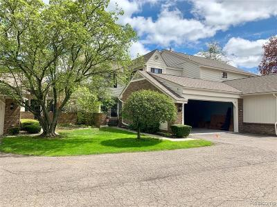 West Bloomfield Condo/Townhouse For Sale: 7159 Creeks Crossing