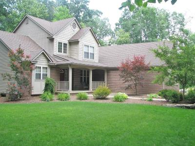 Chelsea Single Family Home Contingent - Financing: 13996 Riker Rd