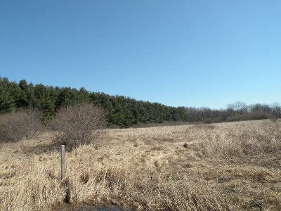 Chelsea MI Residential Lots & Land For Sale: $84,900