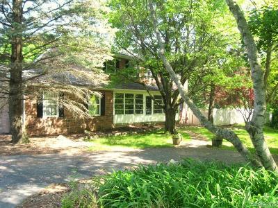 Northville Single Family Home For Sale: 8830 Napier Rd