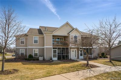 Ann Arbor Condo/Townhouse For Sale: 1518 Oakfield Dr