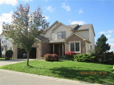 Novi Single Family Home For Sale: 28947 Hearthstone Dr