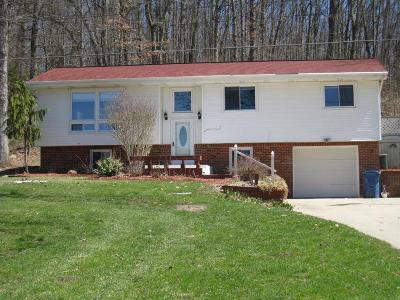 Single Family Home For Sale: 10781 Springville Hwy