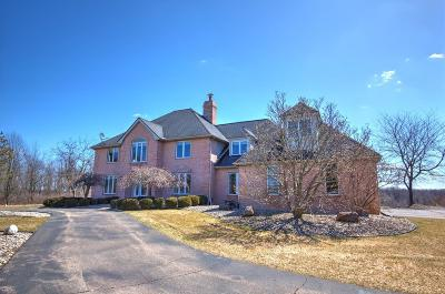 Chelsea Single Family Home For Sale: 17501 W Old Us Highway 12
