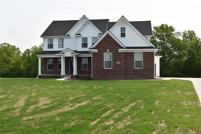 Washtenaw County Single Family Home For Sale: 4165 Tess Ln