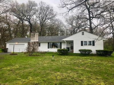 Chelsea Single Family Home For Sale: 6120 Stofer Rd