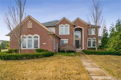 Belleville Single Family Home For Sale: 13478 Beacon Trl