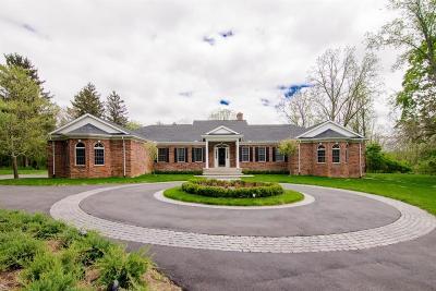 Ann Arbor Single Family Home For Sale: 250 Barton Shore Dr