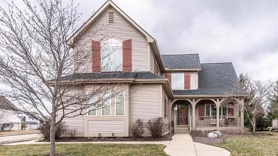 Ann Arbor Single Family Home For Sale: 5976 Villa France Ave