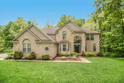 Chelsea Single Family Home Contingent - Financing: 13525 Redmonds Hill Ct