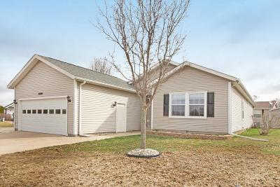 Chelsea Single Family Home For Sale: 23021 Redwood Dr