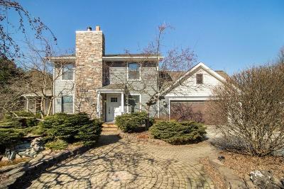 Chelsea Single Family Home For Sale: 2301 Hoppe Rd