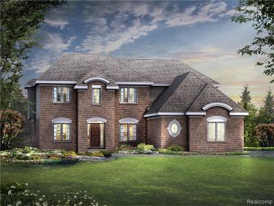 Novi Single Family Home For Sale: 47734 Alpine Dr