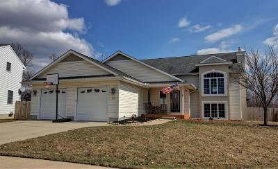 Milan Single Family Home Contingent - Financing: 370 Ann Marie Dr