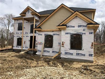 West Bloomfield Single Family Home For Sale: 5811 Windrift Crt
