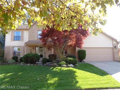 Novi Single Family Home For Sale: 44513 Stone Rd