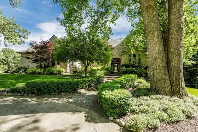 Ann Arbor Single Family Home For Sale: 5520 Stone Valley