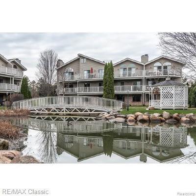 Northville Condo/Townhouse For Sale: 21046 Boulder Cir