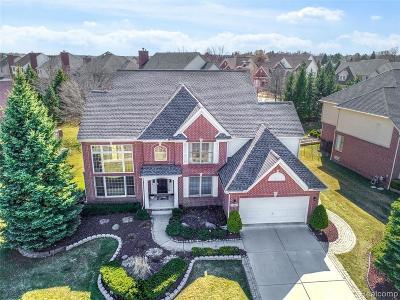 Novi Single Family Home For Sale: 24465 Thatcher Dr