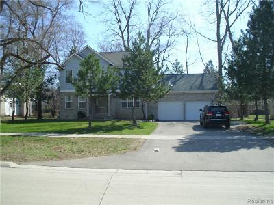 Southfield Single Family Home For Sale: 27320 Lahser Rd