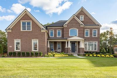 Northville Single Family Home For Sale: 18120 Shagbark Dr